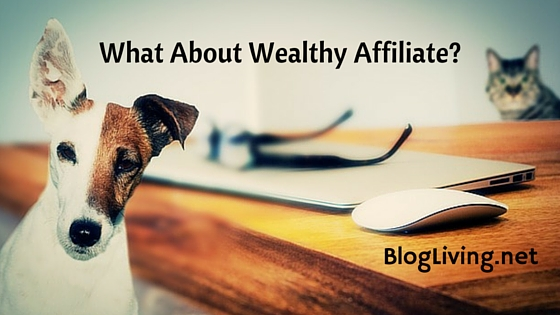 What About Wealthy Affiliate?