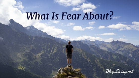 What Is Fear About?